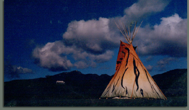 Tiger Tipi in Pinnacle valley