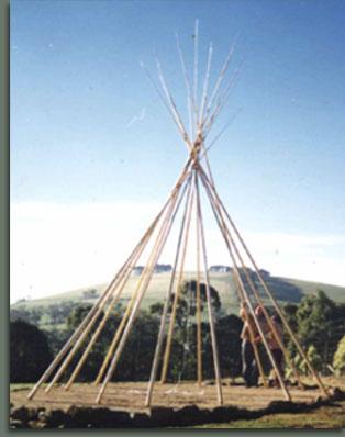 Tipi poles errected